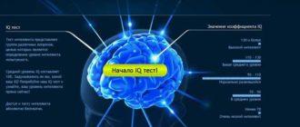 IQ-тест