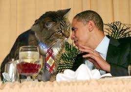 фото с президентом
