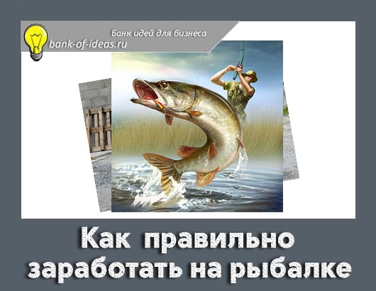 как заработать на рыбалке